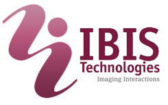 Logo IBIS Technologies